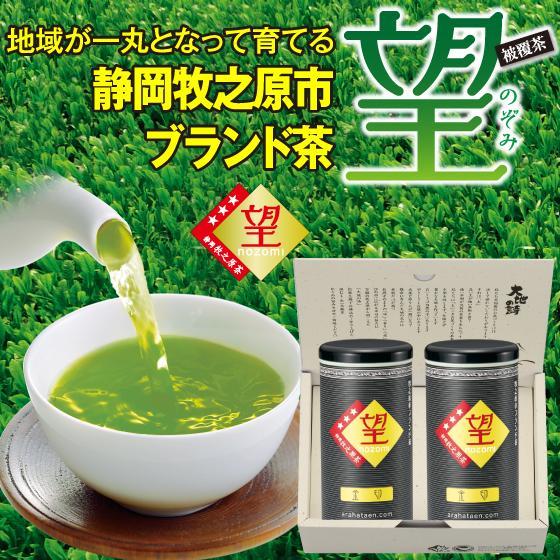 お歳暮 お茶 緑茶 茶葉 プレゼント ギフト 静岡茶 カテキン ブランド茶 望金印100g2本箱入 送料無料|arahata