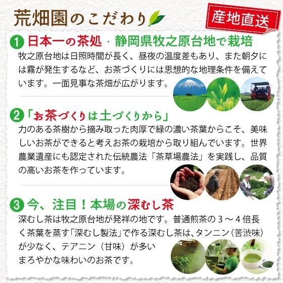 お茶 緑茶 茶葉 プレゼント ギフト 静岡茶 カテキン 高級 極上・初摘・大地の旬3袋箱入 送料無料|arahata|07