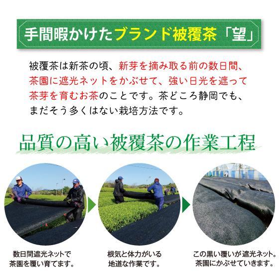 お茶 緑茶 茶葉 プレゼント 茶 ギフト 2021 健康 静岡茶 缶 2種から選べる紅白だるま缶セット 送料無料|arahata|13