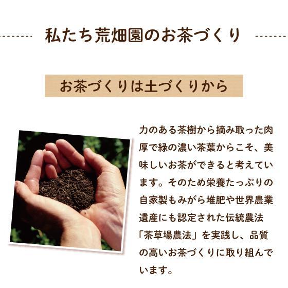 お茶 緑茶 茶葉 プレゼント 茶 ギフト 2021 健康 静岡茶 缶 2種から選べる紅白だるま缶セット 送料無料|arahata|16