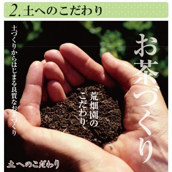 お茶 緑茶 静岡茶 カテキン 徳用 お得 茎茶 がぶ飲みくき茶 3袋セット 送料無料 セール|arahata|08