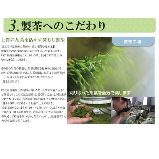 お茶 緑茶 静岡茶 カテキン 徳用 お得 茎茶 がぶ飲みくき茶 3袋セット 送料無料 セール|arahata|10
