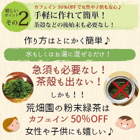 お茶 粉末茶 緑茶 静岡茶 カテキン お茶屋が作った静岡の粉末緑茶 100g×2袋セット 送料無料 セール|arahata|10