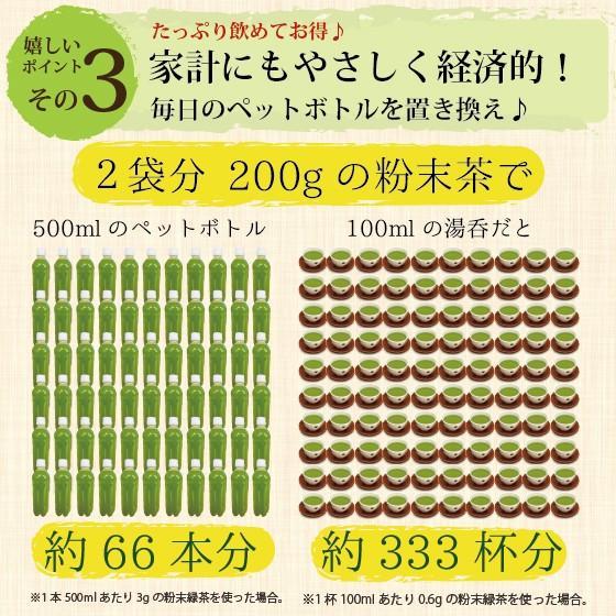 お茶 粉末茶 緑茶 静岡茶 カテキン お茶屋が作った静岡の粉末緑茶 100g×2袋セット 送料無料 セール|arahata|12
