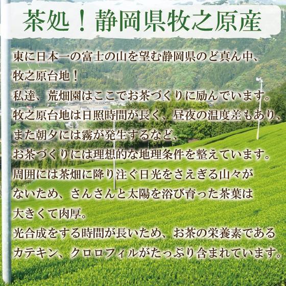 お茶 粉末茶 緑茶 静岡茶 カテキン お茶屋が作った静岡の粉末緑茶 100g×2袋セット 送料無料 セール|arahata|05