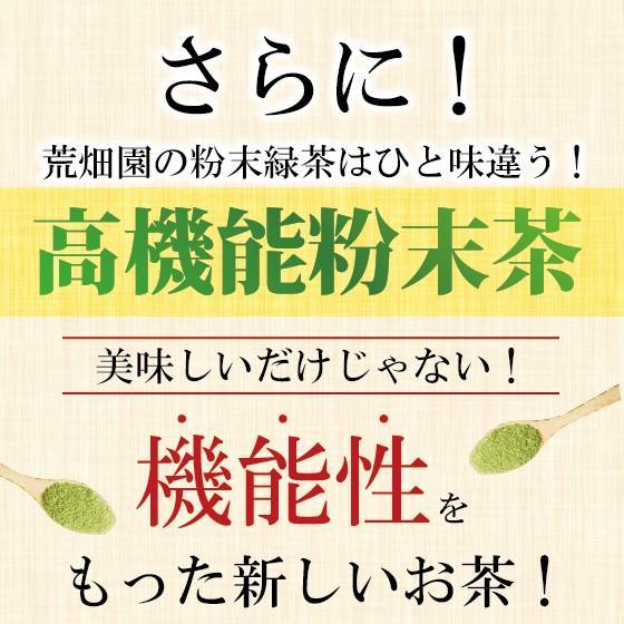お茶 粉末茶 緑茶 静岡茶 カテキン お茶屋が作った静岡の粉末緑茶 100g×2袋セット 送料無料 セール|arahata|06