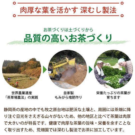 母の日 2021 ギフト プレゼント お茶 新茶 緑茶 静岡茶 送料無料 招き猫缶2本箱入 5月5日頃発送予定|arahata|13