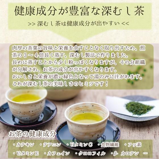 お茶 緑茶 ティーバッグ 静岡茶 水出し カテキン 徳用 100ヶ入り お得 がぶ飲み深むしティーパック 送料無料 セール|arahata|10