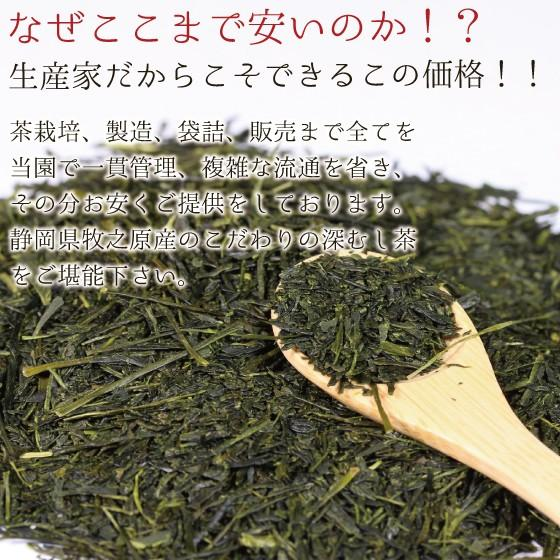 お茶 緑茶 ティーバッグ 静岡茶 水出し カテキン 徳用 100ヶ入り お得 がぶ飲み深むしティーパック 送料無料 セール|arahata|13