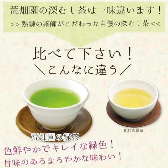 お茶 緑茶 ティーバッグ 静岡茶 水出し カテキン 徳用 100ヶ入り お得 がぶ飲み深むしティーパック 送料無料 セール|arahata|07