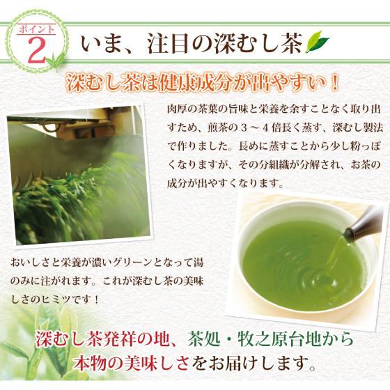 お茶 お試し 緑茶 静岡茶 カテキン 福袋 2021 深蒸し茶 大入り茶葉セット 送料無料 arahata 10