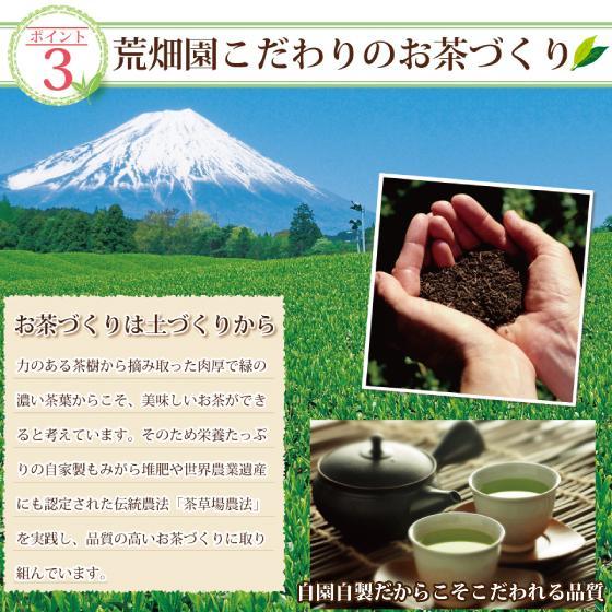 お茶 お試し 緑茶 静岡茶 カテキン 福袋 2021 深蒸し茶 大入り茶葉セット 送料無料 arahata 11