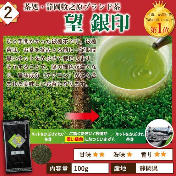 お茶 お試し 緑茶 静岡茶 カテキン 福袋 2021 深蒸し茶 大入り茶葉セット 送料無料 arahata 05