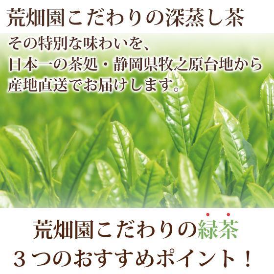 お茶 お試し 緑茶 静岡茶 カテキン 福袋 2021 深蒸し茶 大入り茶葉セット 送料無料 arahata 08