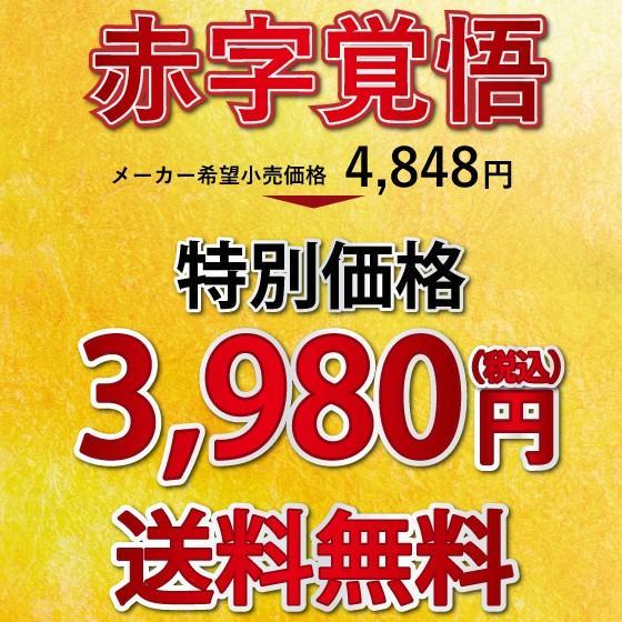 福袋 2021 お茶 緑茶 静岡茶 カテキン 詰め合せ 大入りバラエティセット 送料無料|arahata|02