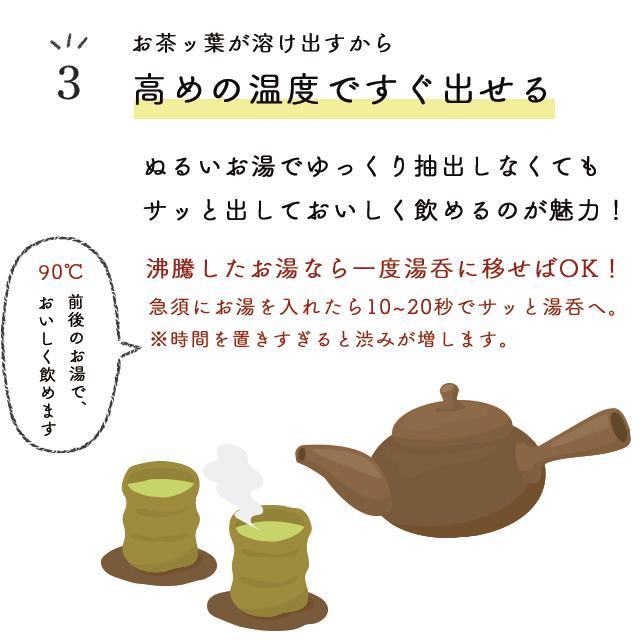 お茶 緑茶 静岡茶 カテキン 徳用 お得 がぶ飲み静岡深むし茶 3袋セット 送料無料 セール ■5892|arahata|16