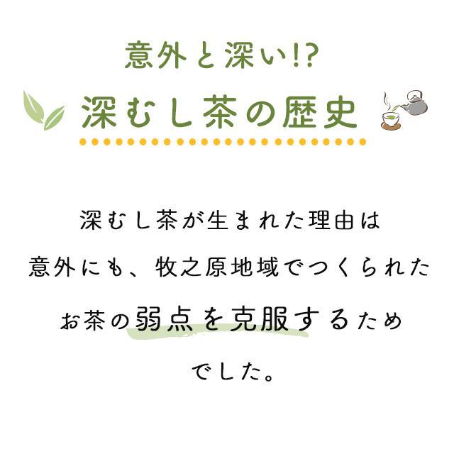 お茶 緑茶 静岡茶 カテキン 徳用 お得 がぶ飲み静岡深むし茶 3袋セット 送料無料 セール ■5892|arahata|07