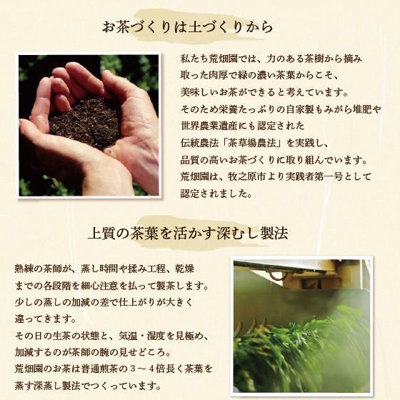 お茶 緑茶 ティーバッグ 静岡茶 カテキン 牧之原ブランド茶 望 銀印ティーパック 2g×30ヶ 送料無料 セール|arahata|14