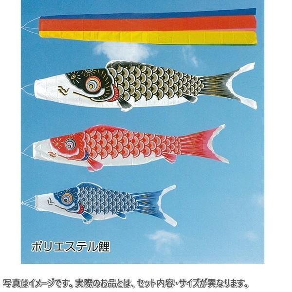 フジサン鯉 ゴールデン鯉セット3m8点