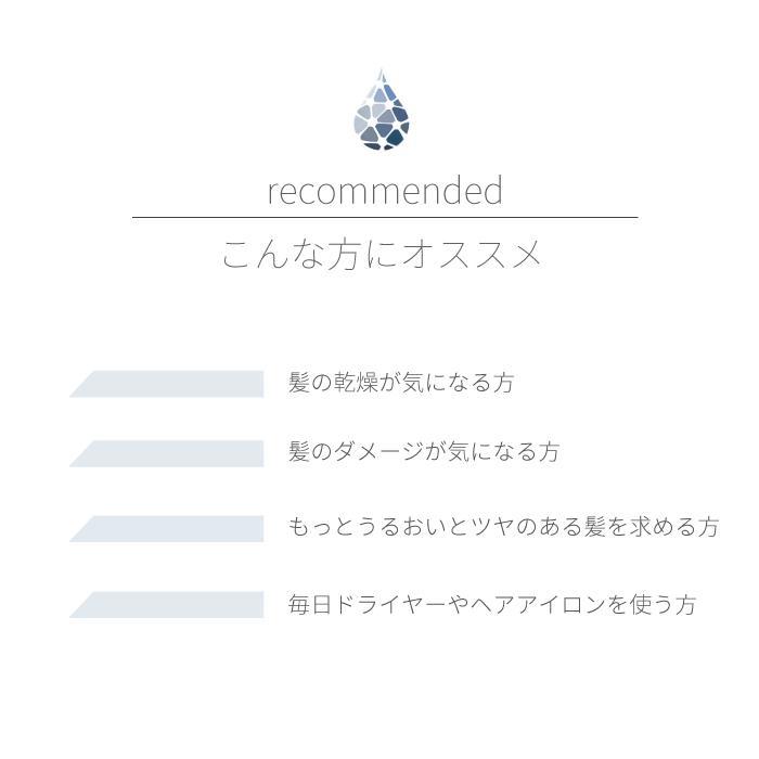 Areti アレティ 東京発メーカー ヒートガード ヘアミスト 熱 ダメージケア 保湿 補修 m1608|areti|10