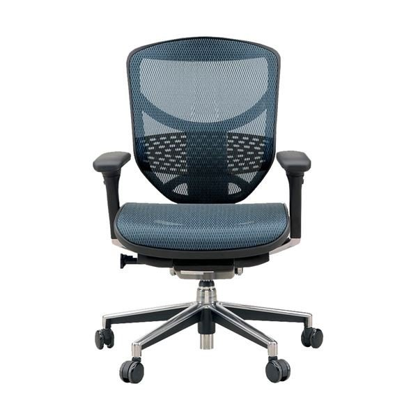 椅子   オフィスチェア アームレスト付き Ergohuman ENJOY(エルゴヒューマンエンジョイ) ロータイプ ブルー