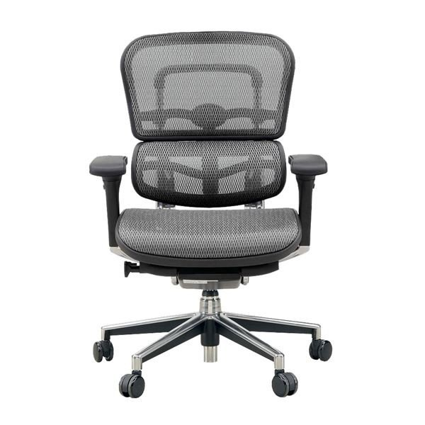 椅子 | オフィスチェア アームレスト付き ランバーサポート付き Ergohuman Basic(エルゴヒューマンベーシック) ロータイプ グレー