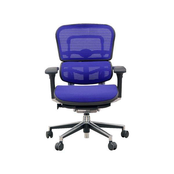 椅子 | オフィスチェア アームレスト付き ランバーサポート付き Ergohuman Basic(エルゴヒューマンベーシック) ロータイプ ブルー