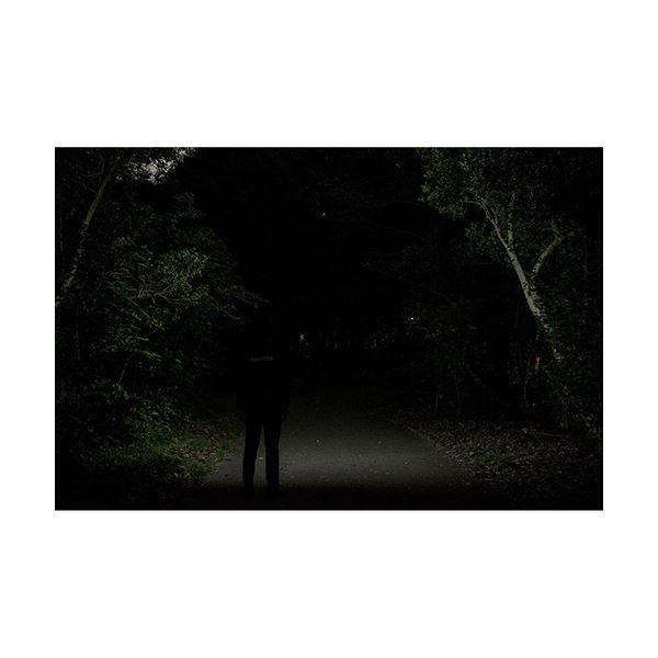 GENTOS COMBREAKER ヘッドライト CB531D arinkurin 03