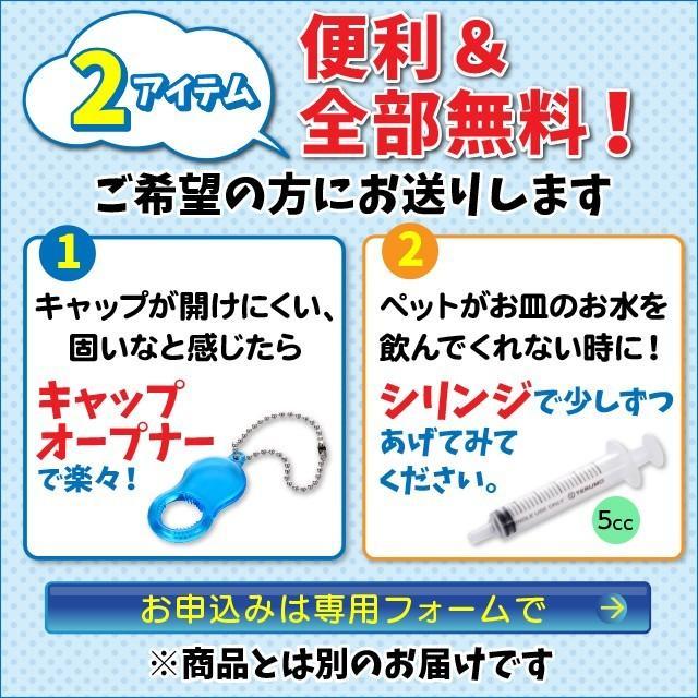 水素水 ペット 犬 猫 水 550ml 10本セット|arkhe|10