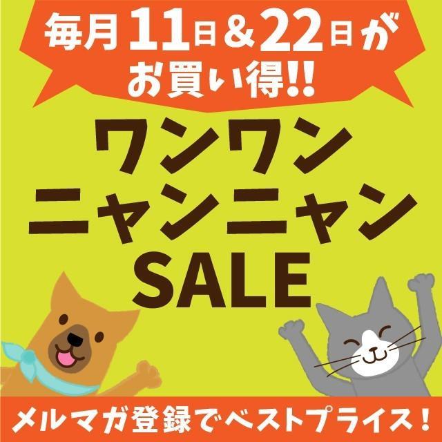 水素水 ペット 犬 猫 水 550ml 10本セット|arkhe|13