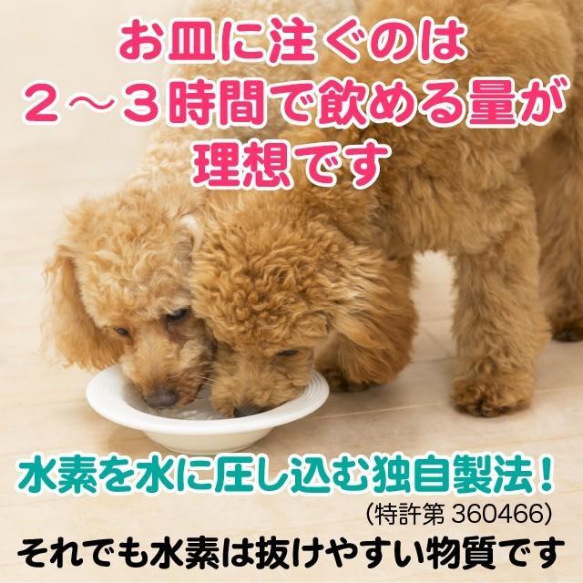ペット用水素水 ミネラルゼロ 甦り水 ペットの水素水 220ml 10本 犬 猫 水 ペット用飲料水 アルミ パウチ 小動物 ウサギ ハムスター 送料無料|arkhe|09