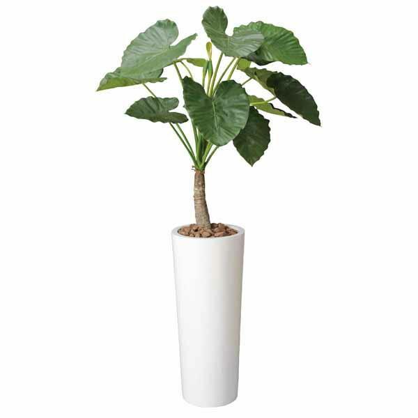 光触媒 観葉植物 人工観葉植物 アートくわず芋 高さ180cm 光触媒観葉植物 フロアタイプ ハイサイズ フェイクグリーン アートグリーン
