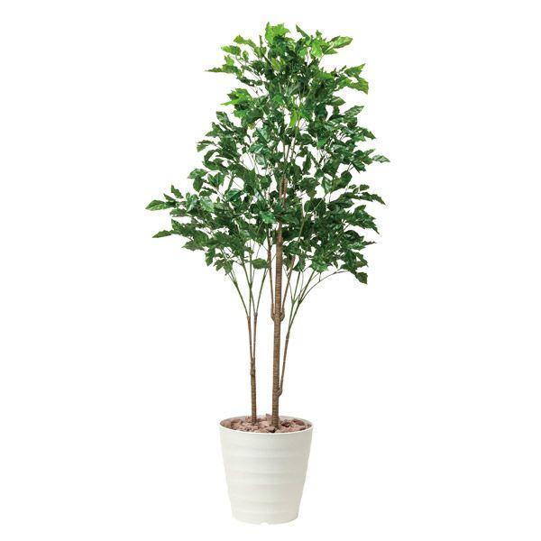 観葉植物  造花 アートグリーン ローズウッドツリー 高さ180cm 光触媒観葉植物