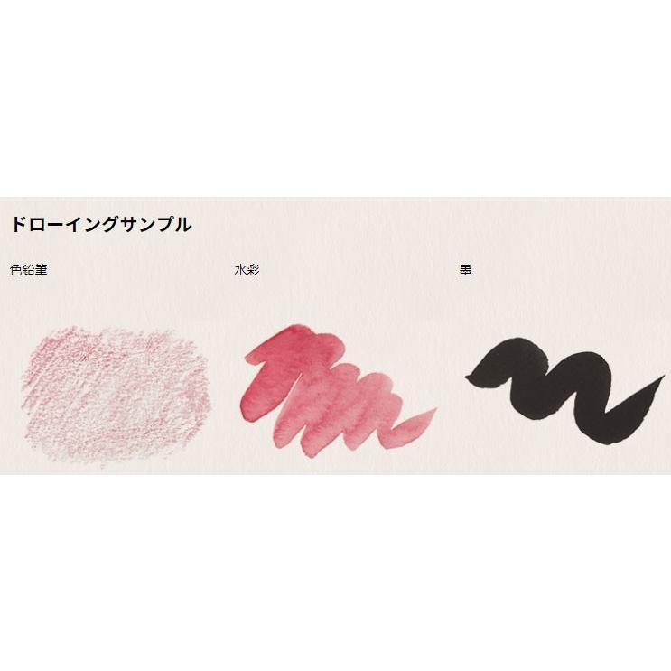 [10冊セット] ミューズ ポストカード AR-021 アラベール ナチュラル 50枚入[郵便枠なし] art-galo 02