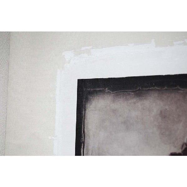 torso01(作:野波浩、カテゴリ:写真、素材:キャンバス)|art-honpo|03