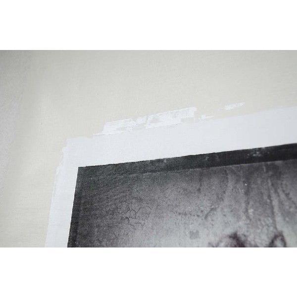 torso03(作:野波浩、カテゴリ:写真、素材:キャンバス)|art-honpo|03