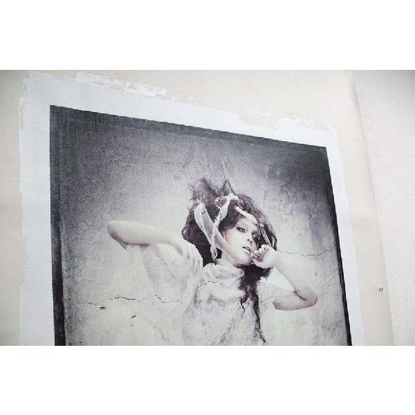 torso03(作:野波浩、カテゴリ:写真、素材:キャンバス)|art-honpo|05