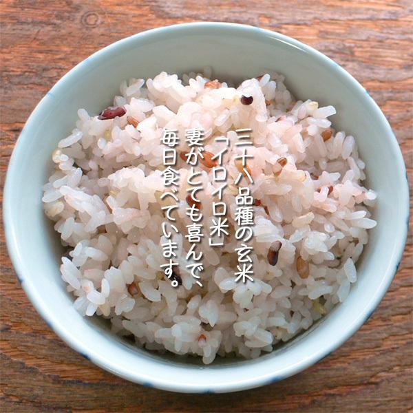 雑穀米ではなくイロイロ米 1kg 令和2年産 黒米 赤米 玄米 ありがとんぼ農園 arumama