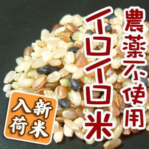 雑穀米ではなくイロイロ米 1kg 令和2年産 黒米 赤米 玄米 ありがとんぼ農園 arumama 02