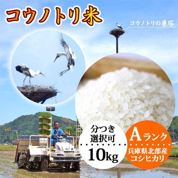 送料無料 お米10kg 玄米 白米 コウノトリ米 令和2年産 コウノトリ育む農法 コシヒカリ 当日精米|arumama