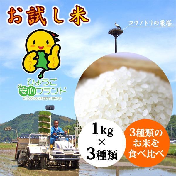 お試しセット お米 玄米 白米 令和2年産 送料無料 3kg|arumama
