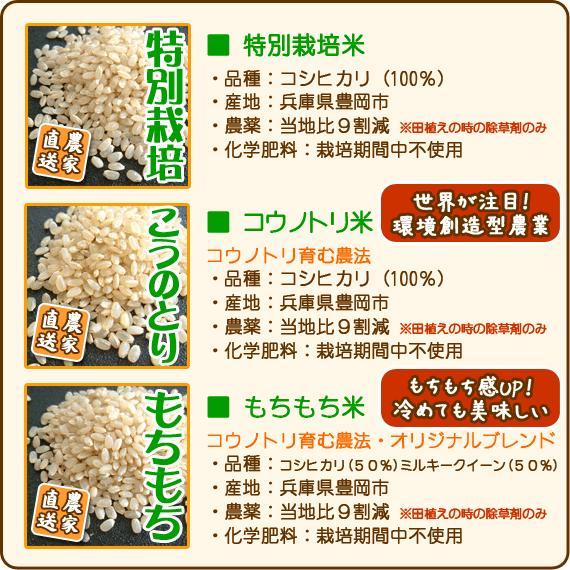 お試しセット お米 玄米 白米 令和2年産 送料無料 3kg|arumama|06