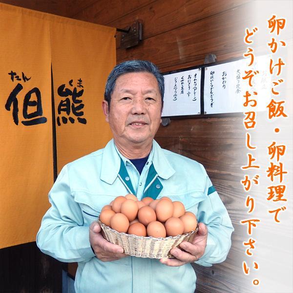 卵 送料無料 たまご 但熊 百笑館 西垣養鶏場 くりたま ギフト Lサイズ 160個|arumama|04