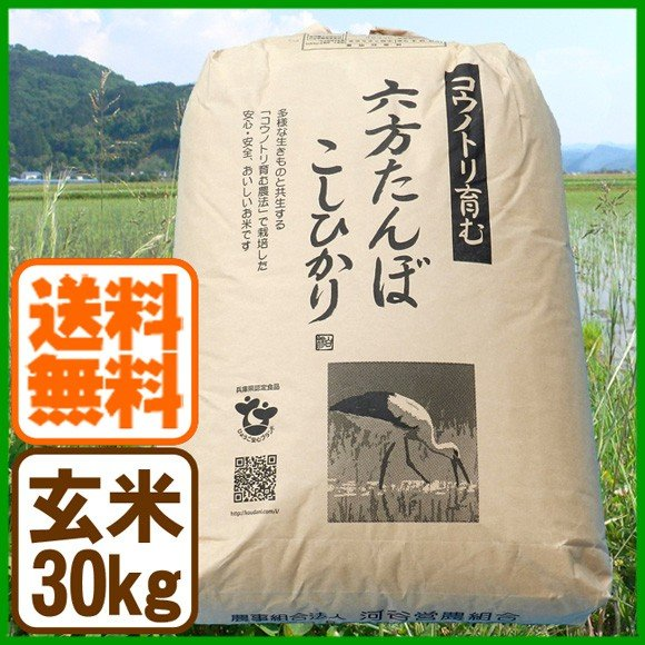 コシヒカリ 玄米 30kg こうのとり米 令和2年産 送料無料 兵庫県産|arumama