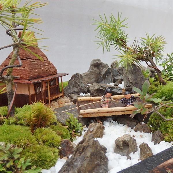 お中元 盆栽 ミニ庭園 盆景【川床(M)】|arumama|02
