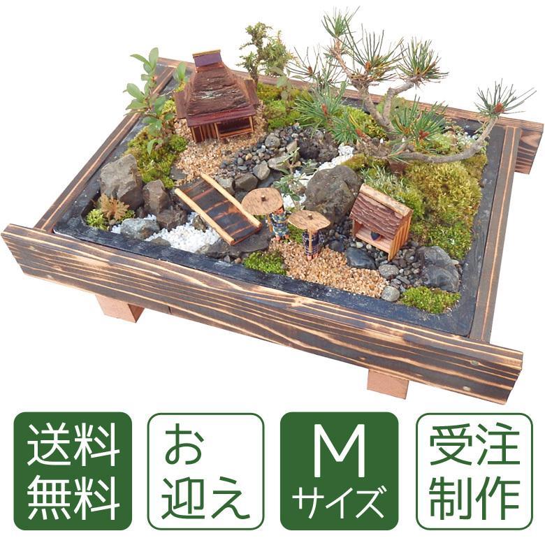 お中元 盆栽 ミニ庭園 盆景【お迎え(M)】 arumama