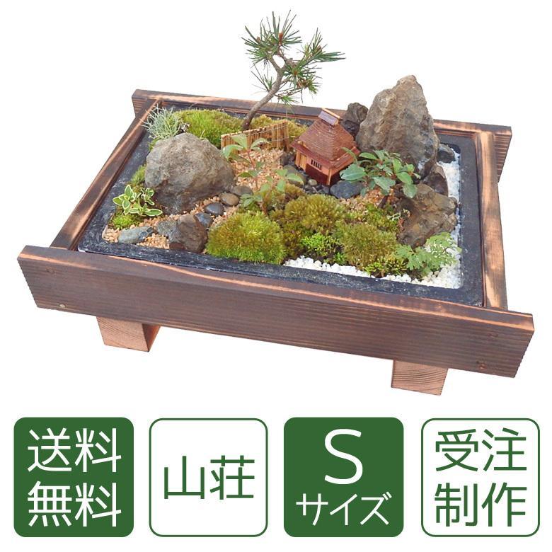 お中元 盆栽 ギフト 送料無料|arumama