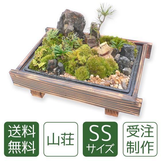 苔盆栽 山荘SS|arumama