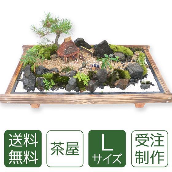 お中元 盆栽 ミニ庭園 盆景【茶屋(L)】|arumama