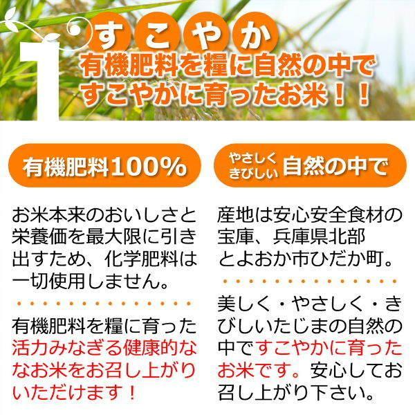 定期購入10kgx12回 令和2年産 玄米 白米 今ずり米 無洗米 農薬不使用 コシヒカリ|arumama|05